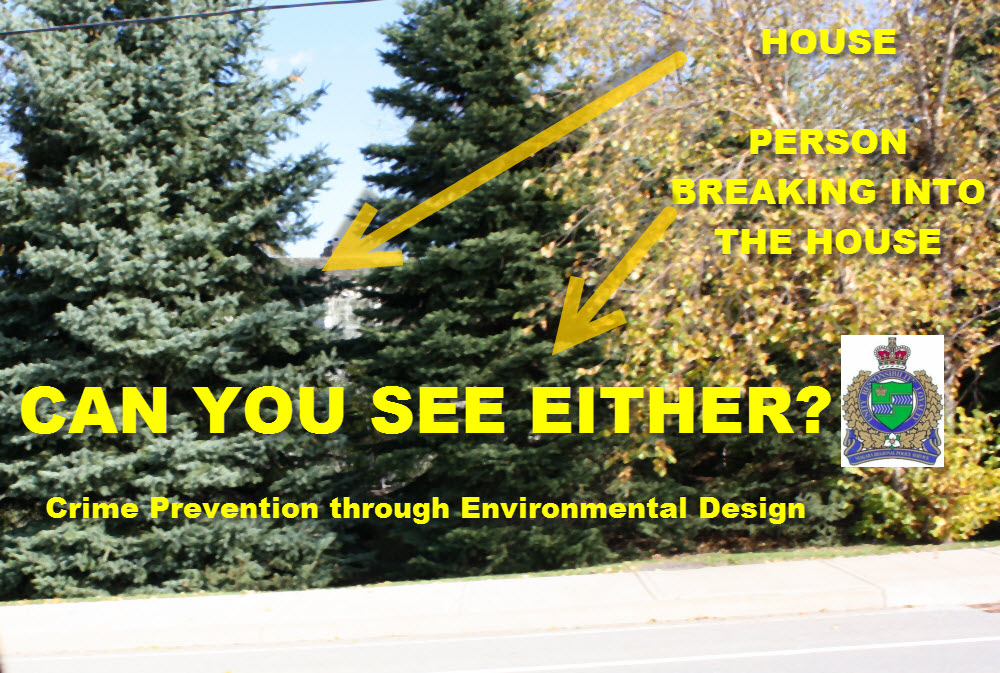 Crime Prevention Through Environmental Design photo