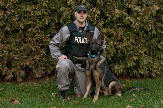 K9 officer with police service dog