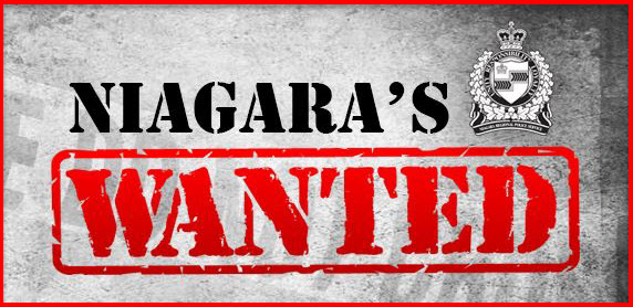 Link to Niagara's Most Wanted